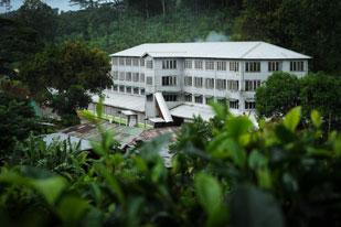 New Deniyaya Estate