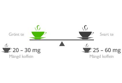 Är grönt te bättre än svart te?