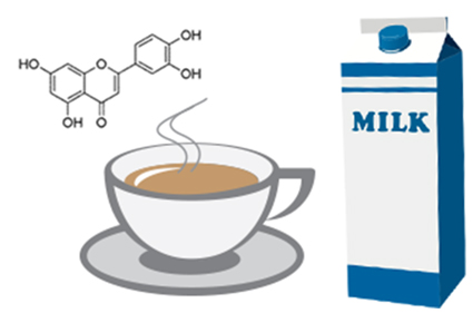If I add milk to my tea will that reduce the health benefits of my tea?